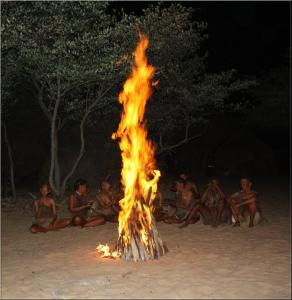 Kalahari Expedition Tour With Bushmen