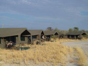 Central Kalahari Game Reserve Tour, Maun, Okavango & Chobe National Park