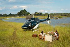 Helicopter Safaris Tour