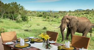 Madikwe Game Reserve Tour Packages