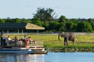 Camping Safari In Chobe National Park Tour